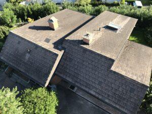 eternit dach reinigen vorher