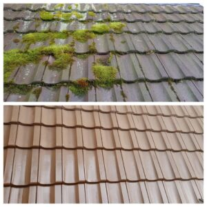 moos auf dem dach entfernen osmo clean